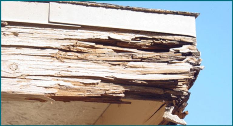 Rotting Wood Roof