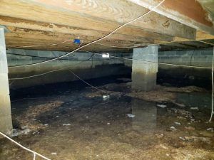 wet crawl space in home basement