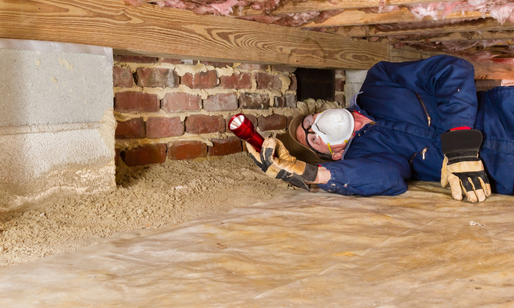 inspector estimating cost of crawl space encapsulation