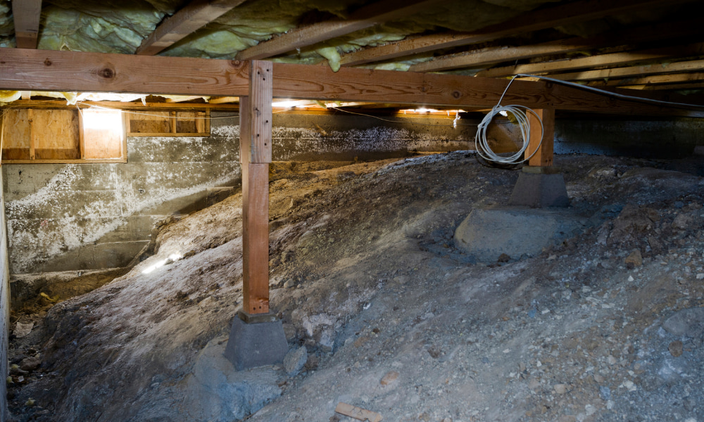 crawl space mold to be removed