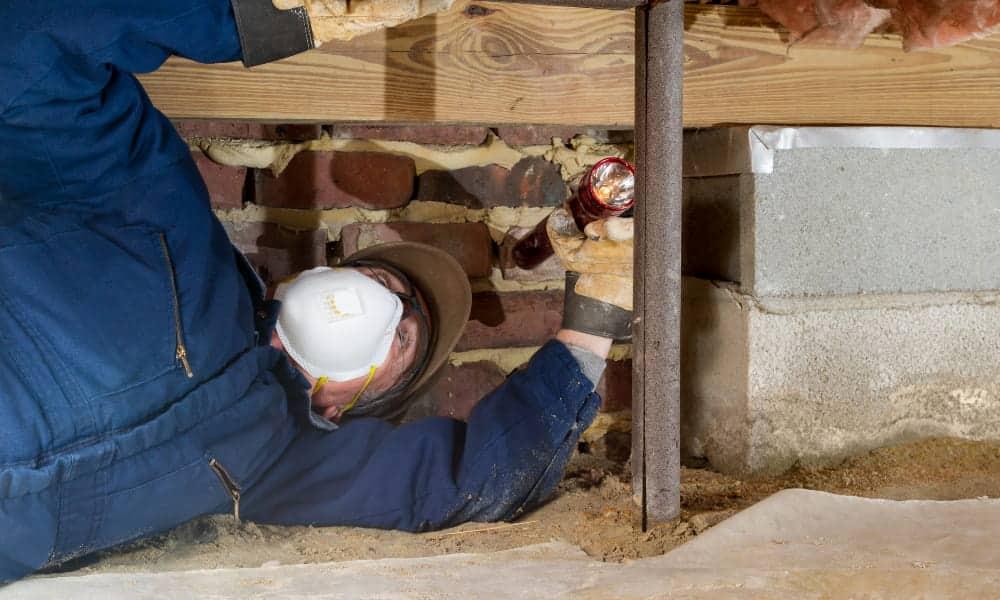 professional investigating crawl space odor