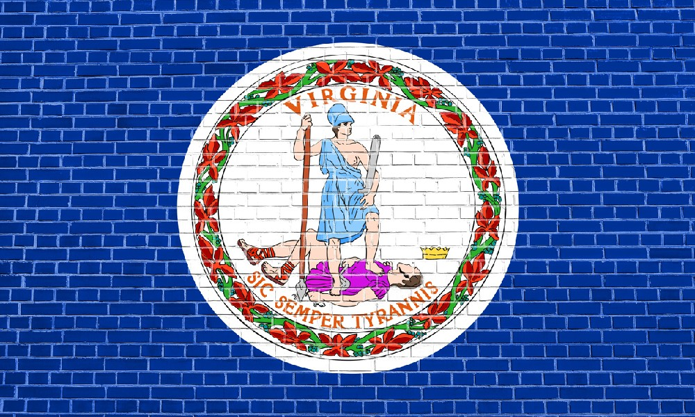 A flag of Virginia on a blue brick wall represents our explanation of foundation repair costs.