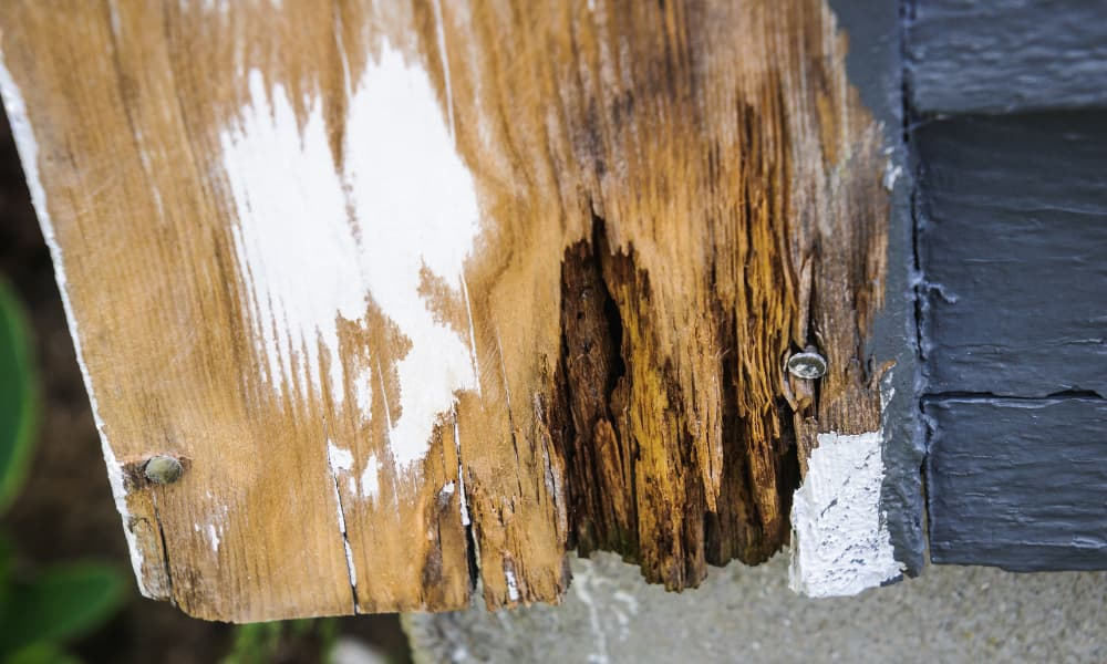 a rotted piece of wood in a homes foundation